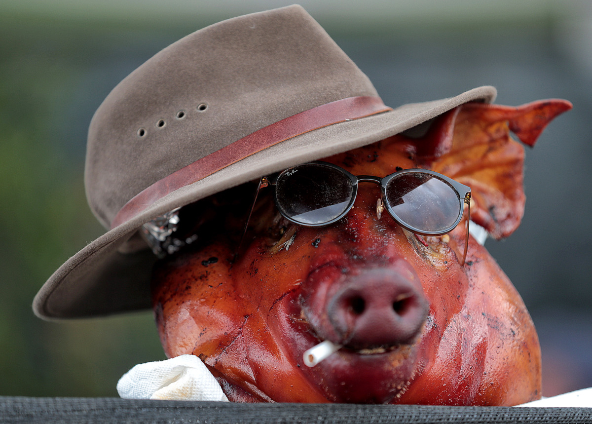 <strong>The Barbecue Republic team gives their whole hog a little style on the final day of the 2019 Memphis in May World Championship Barbecue Cooking Contest at Tom Lee Park on May, 18, 2019.</strong> (Jim Weber/Daily Memphian)