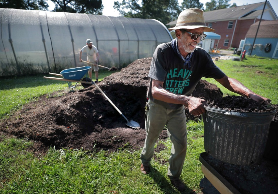 <strong>Veteran Ed Carlock, 71, helps mulch a line of blackberry bushes at the Alpha Omega Veterans Services community garden in South Memphis on Tuesday, July 2. The nonprofit that mostly provides housing for homeless veterans has added an urban farm to provide a kind of horticultural therapy as well as job training.</strong> (Jim Weber/Daily Memphian)