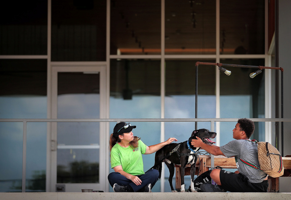 <strong>Leslie Barton with the Memphis and Shelby County Humane Society lets Jayden Ciaramitaro (right) get in some petting time with Bo during a rest on the porch at the Shelby Farms' FedEx Event Center at the East side of Hyde Lake on July 3, 2019 where the park is planning to get a new restaurant this fall.</strong> (Jim Weber/Daily Memphian)