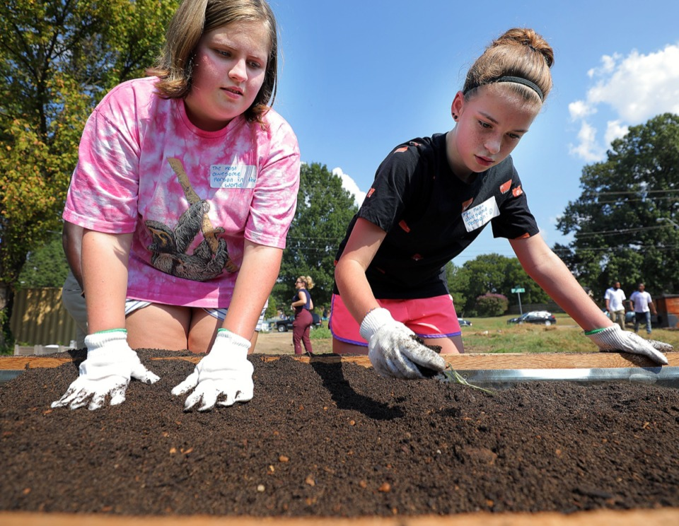 <strong>Ella Cash and Molly Gorham, whose dad works with 275 Food Project, help fill a raised bed near the corner of Walker Avenue and College Street Friday, Sept. 13, that will grow some of the produce and herbs used at an on-site food venue called radical.tacos.</strong> (Patrick Lantrip/Daily Memphian)