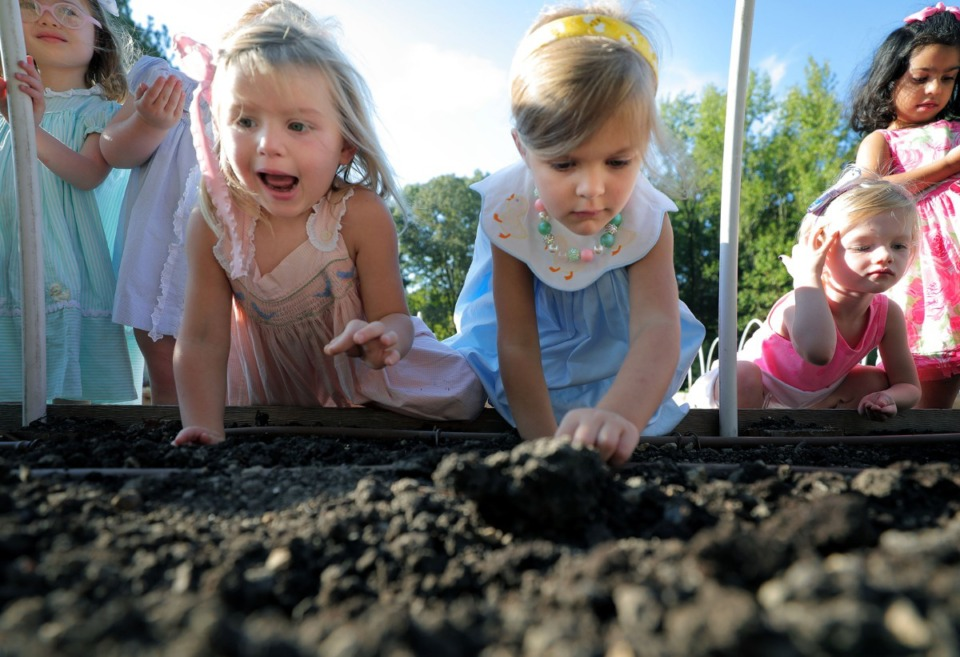 <strong>The kids of Lynn Erickson's pre-K class at Hutchison School in East Memphis smile as they plant carrot seeds in the school's recently expanded garden Sept. 25, 2019.</strong> (Patrick Lantrip/Daily Memphian)