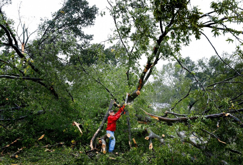 <strong>Home Depot employee Mike Scruggs helps to clear a large tree blocking Cottonwood Road, after heavy rains and high winds hit the Parkway Village area early Monday, Oct. 21, 2019.</strong> (Mark Weber/Daily Memphian)