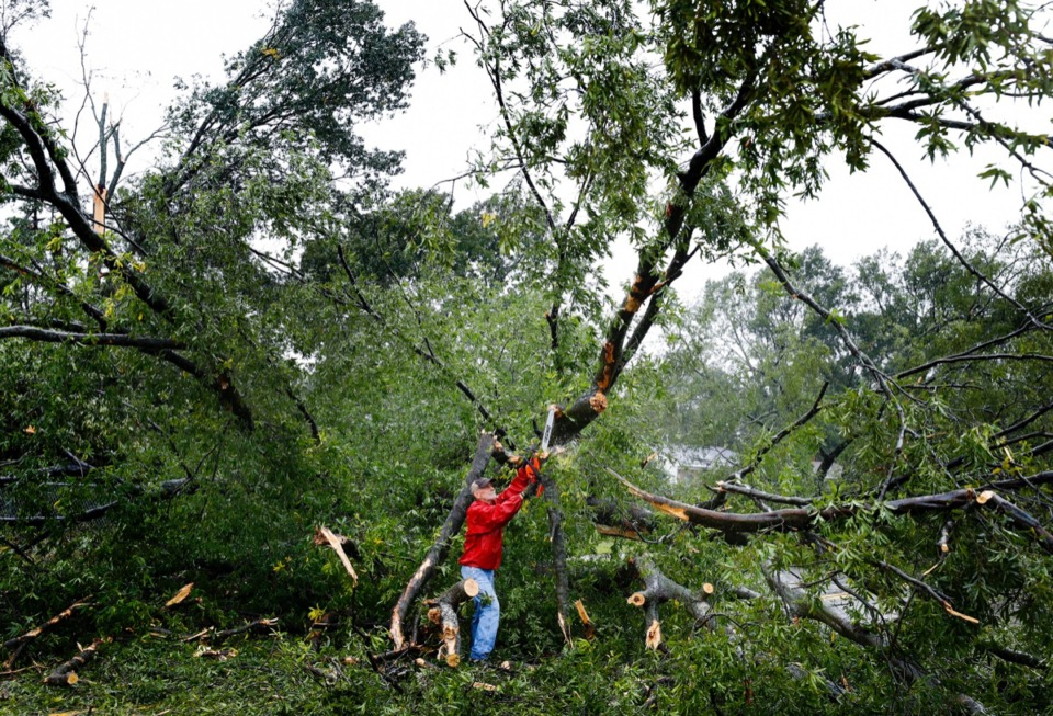 <strong>Home Depot employee Mike Scruggs helps to clear a large tree blocking Cottonwood Road Monday, Oct. 21.</strong> (Mark Weber/Daily Memphian)