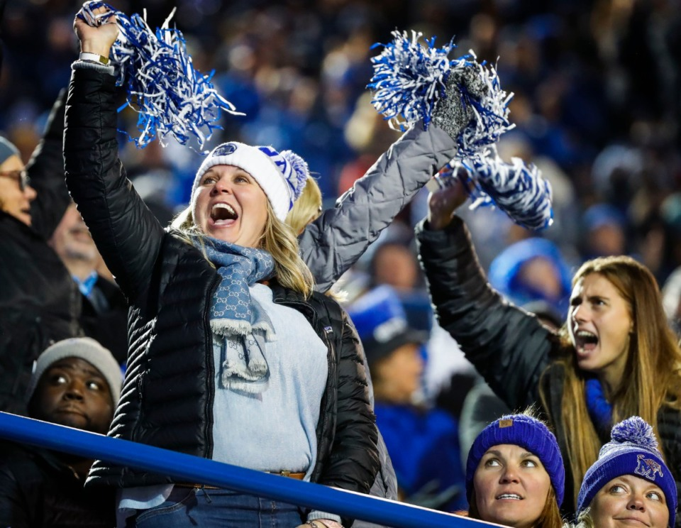 <strong>Memphis fans cheers on the Tigers during the game against SMU Saturday, Nov. 2, 2019 at Liberty Bowl Memorial Stadium.</strong> (Mark Weber/Daily Memphian)