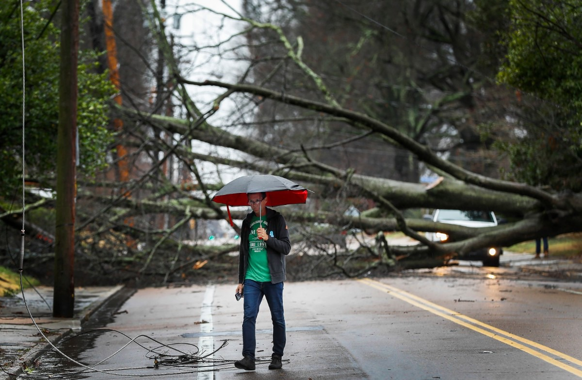 <strong>Mark Parrish surveys the damage of a fallen tree on McLean after high winds and heavy rains hit the area in the early morning hours of Saturday, Jan. 11, 2020.</strong> (Mark Weber/Daily Memphian)
