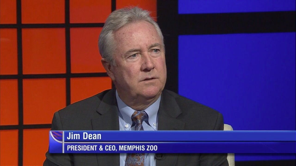<strong>Memphis Zoo President and CEO Jim Dean joins the podcast.</strong>
