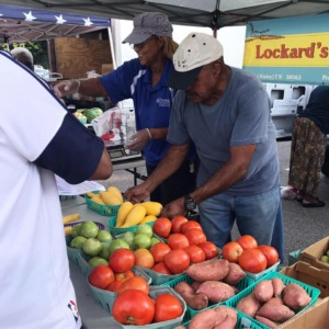 <strong>The South Memphis Farmers Market officially opened July 25, 2010, to address a food desert, or an urban area in which it is difficult to buy affordable or good-quality fresh food.</strong> (Courtesy of&nbsp;South Memphis Farmers Market)
