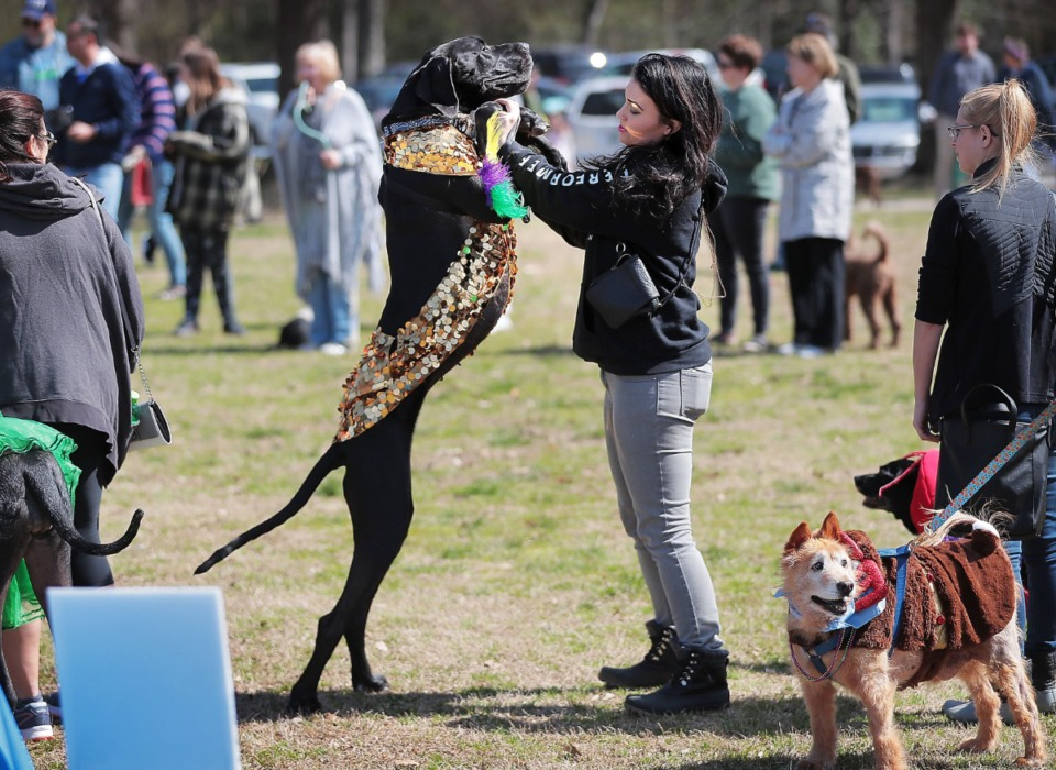 <strong>Aubrey DePen does a little dance with her Great Dane Bittywhite during a&nbsp;Mardi Growl dog party at Overton Park on March 7, 2020. The event included a costume contest and parade hosted by the Overton Park Conservancy and Hollywood Feed. </strong>(Jim Weber/Daily Memphian)