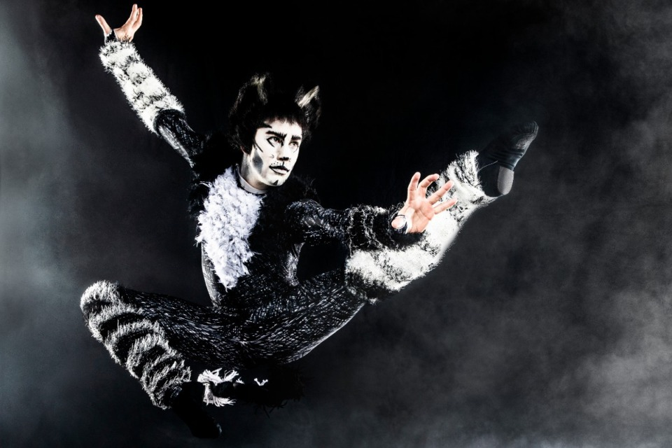 "<strong>""Cats"" will play at the Orpheum Feb. 9-14, 2021.</strong> (Courtesy Orpheum Theatre)"