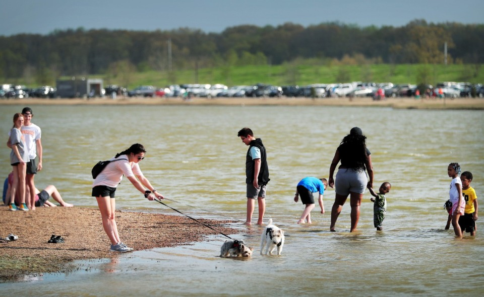 <strong>Mostly well spaced out crowds flock to Shelby Farms on March 26, 2020, as Memphians emerge from their sheltering-in-place to enjoy a budding spring day after weeks of poor weather and worse news have conspired to keep most folks indoors.</strong> (Jim Weber/Daily Memphian)