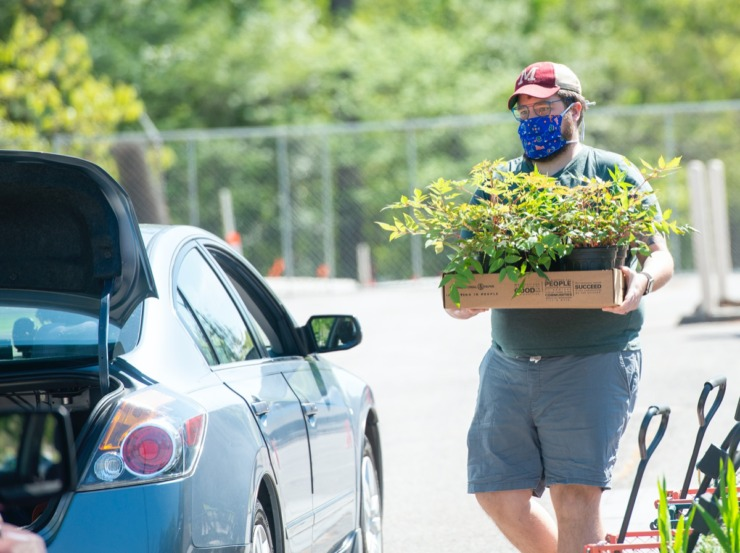 <strong>Matthew Davis picks up his order from this year's Annual Plant at the Garden at the Memphis Botanic Gardens Saturday, April 11, 2020. This year's sale was done online with pickup at the Garden.</strong> (Greg Campbell/Special for The Daily Memphian)