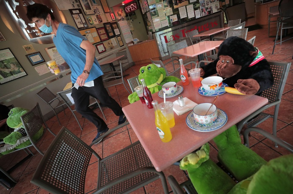<strong>Jonathan Magallanes delivers drinks and sacks of food to the curb while in-store customers are only of the fluffy stuffed variety as the popular Germantown eatery Las Tortugas reopens on April 28, 2020, with curbside service.</strong> (Jim Weber/Daily Memphian)
