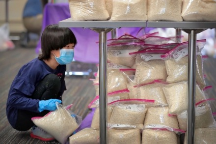 <strong>Olivia Tan, 9, looks for a free spot to stack more rice as volunteers from the local Malaysian American community partner with the University of Memphis on a food drive at the International Center on May 2, 2020.</strong> (Jim Weber/Daily Memphian)