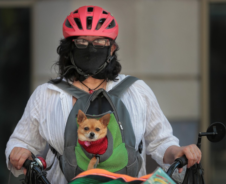 <strong>Teresa Andreuccetti goes for near full face protection while biking on Main Street with her dog Meme in Downtown Memphis on May 1, 2020.</strong> (Jim Weber/Daily Memphian)