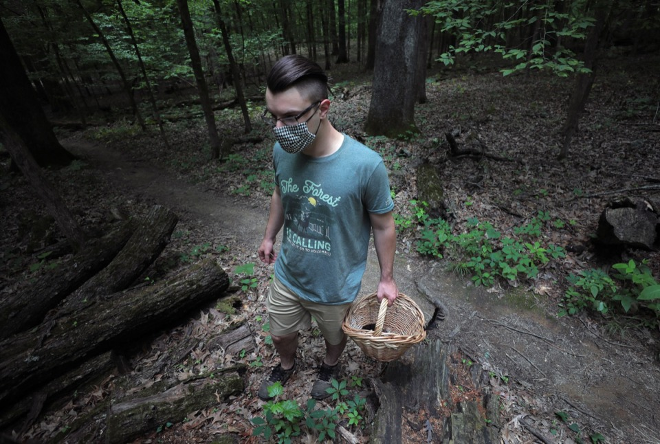 <strong>Benjamin Winborn inspects a growth of yellow mustard poly spore while foraging for edible mushrooms in Nesbit Park in Bartlett.</strong> (Patrick Lantrip/Daily Memphian)