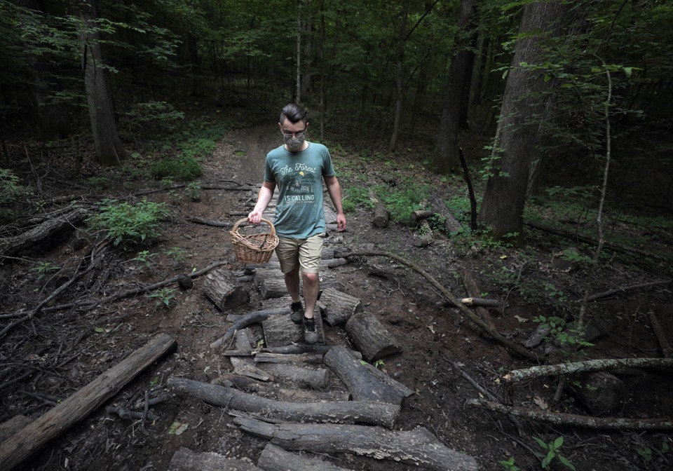 <strong>Benjamin Winborn crosses a dry creek bed while foraging for edible mushrooms in Nesbit Park in Bartlett.</strong> (Patrick Lantrip/Daily Memphian)