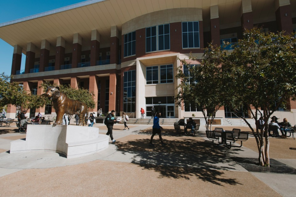 <strong>The University of Memphis plans to offer an online master&rsquo;s degree in nonprofit management, starting in January, 2021.</strong> (Daily Memphian file)