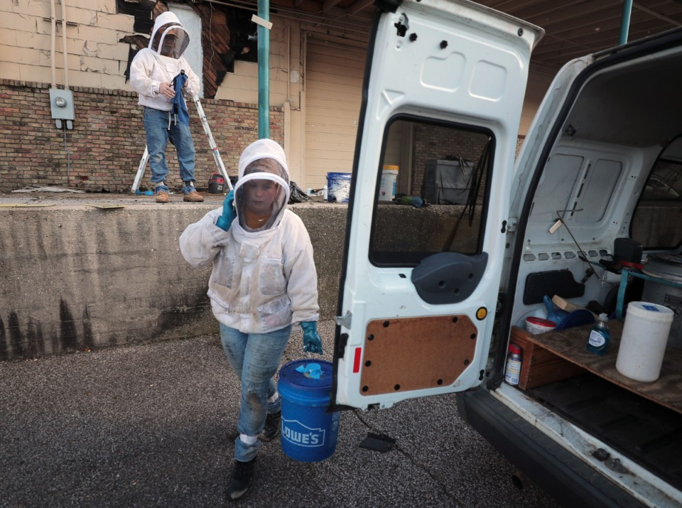 <strong>Cassie Krebs loads up one of three 5-gallon buckets of bees that was removed from an industrial facility in North Memphis on June 17, while David Glover cleans up in the background.</strong> (Patrick Lantrip/Daily Memphian)