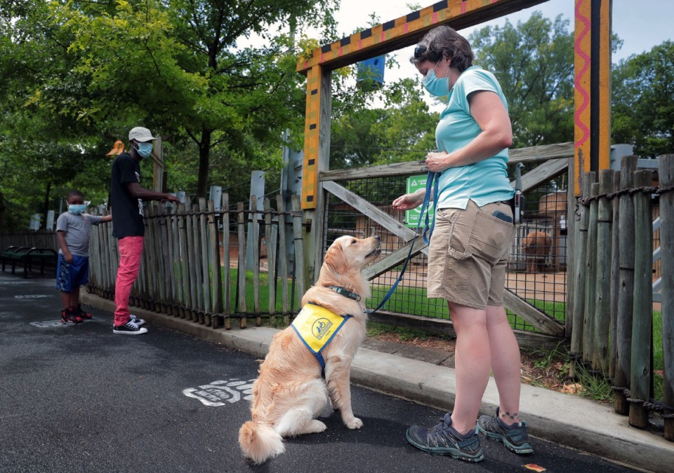 <strong>Courtney Janney gives North a treat while Memphis Zoo visitors Demarcus Moore and Martegus Pargee look on July 9, 2020.</strong> (Patrick Lantrip/Daily Memphian)