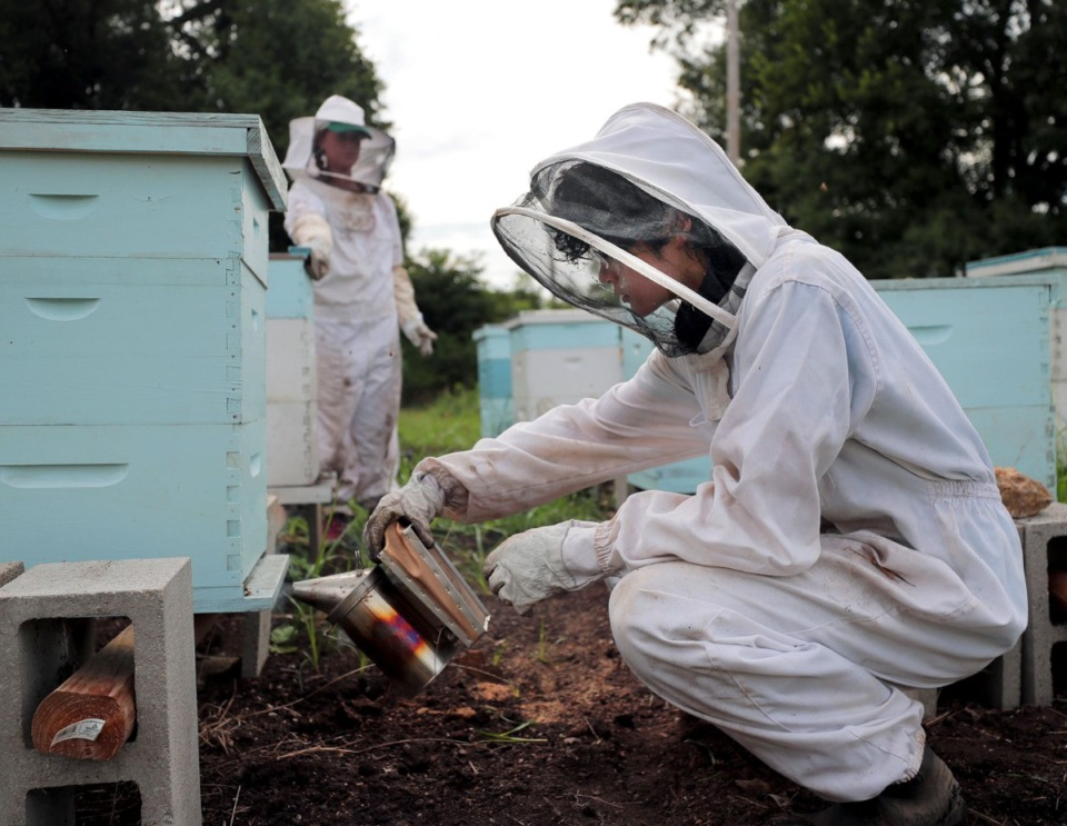 <strong>Kevin Flannary and Anna Mauwong tend to the beehives at ARK Farms July 22, 2020.</strong> (Patrick Lantrip/Daily Memphian)
