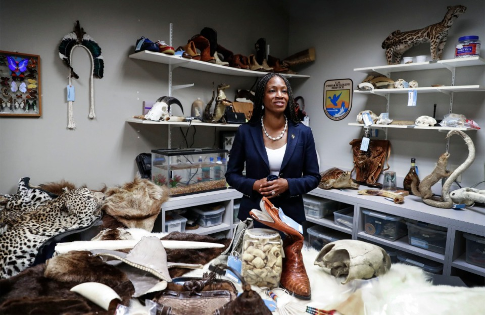 <strong>U.S. Fish &amp; Wildlife Service Director Aurelia Skipwith speaks with the media on Wednesday, Aug. 12, 2010, after she toured the FedEx hub in connection with the agency's efforts to stop illegal trafficking in wildlife.</strong> (Mark Weber/Daily Memphian)