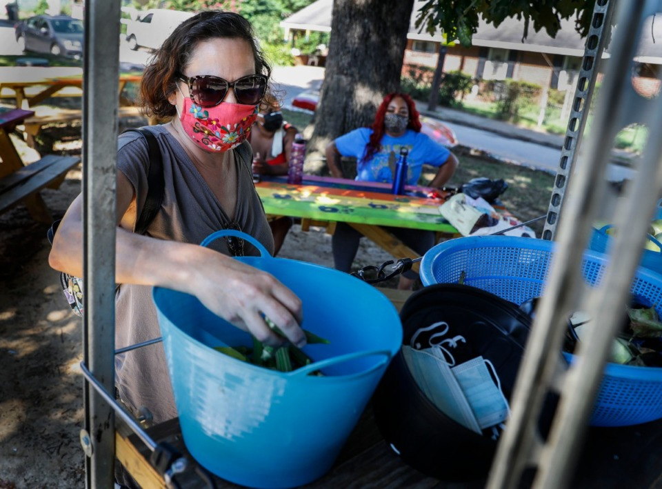 <strong>Suzy Hendrix grabs okra while shopping at the Carpenter Art Garden pop up market event on Monday, Aug. 17, 2020. Since April, the nonprofit has distributed over 1,000 masks in the community.</strong> (Mark Weber/Daily Memphian)