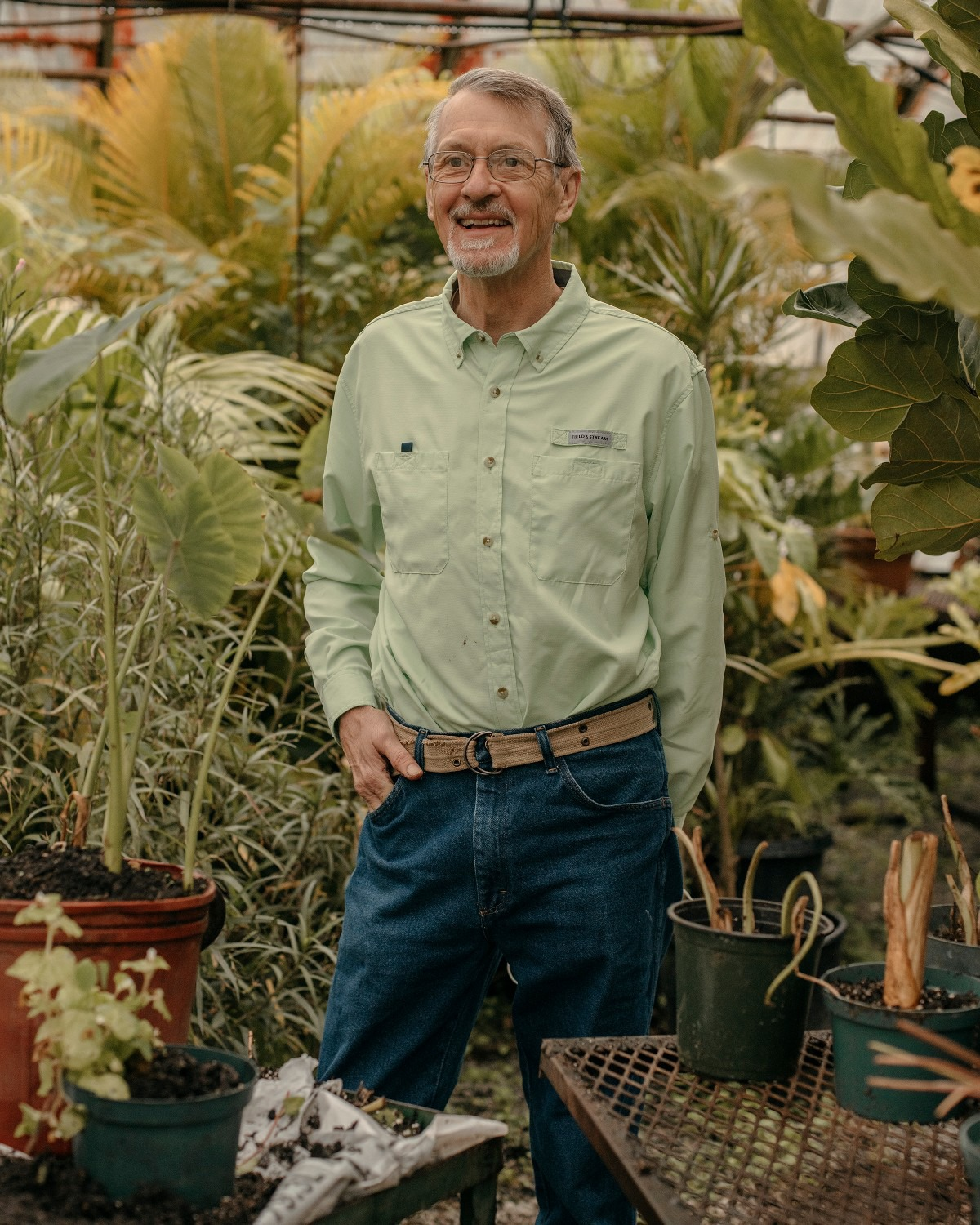 <strong>Tom Rieman, a Master Gardener, stands in one of the city&rsquo;s greenhouses on MLGW&rsquo;s property in Overton Park.</strong> (Houston Cofield/Special To The Daily Memphian)