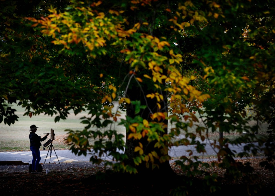 <strong>Artist Jimpise Ayers paints fall scenes under the changing foliage in Overton Park on Monday, Nov. 9, 2020</strong>. (Mark Weber/The Daily Memphian)