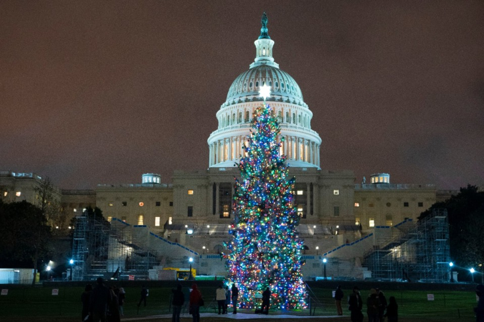 <strong>U.S. Capitol Christmas Tree glows at the U.S. Capitol after negotiators sealed a deal for COVID relief Sunday, Dec. 20, 2020, in Washington. Top Capitol Hill negotiators sealed a deal Sunday on an almost $1 trillion COVID-19 economic relief package.</strong> (Jose Luis Magana/AP)