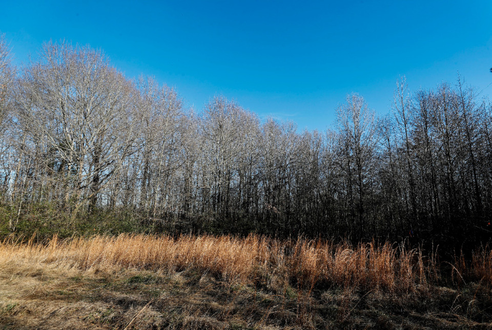 <strong>Vacant land on Friday, Jan. 29, 2021 near Crestwyn Hills in Germantown. City officials are looking into purchasing the land and converting it into a sports complex.</strong> (Mark Weber/The Daily Memphian)