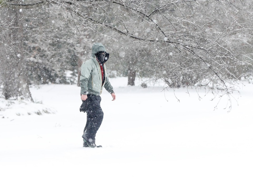<strong>A man walks through Overton Park on Monday, Feb. 15.</strong> (Mark Weber/Daily Memphian)