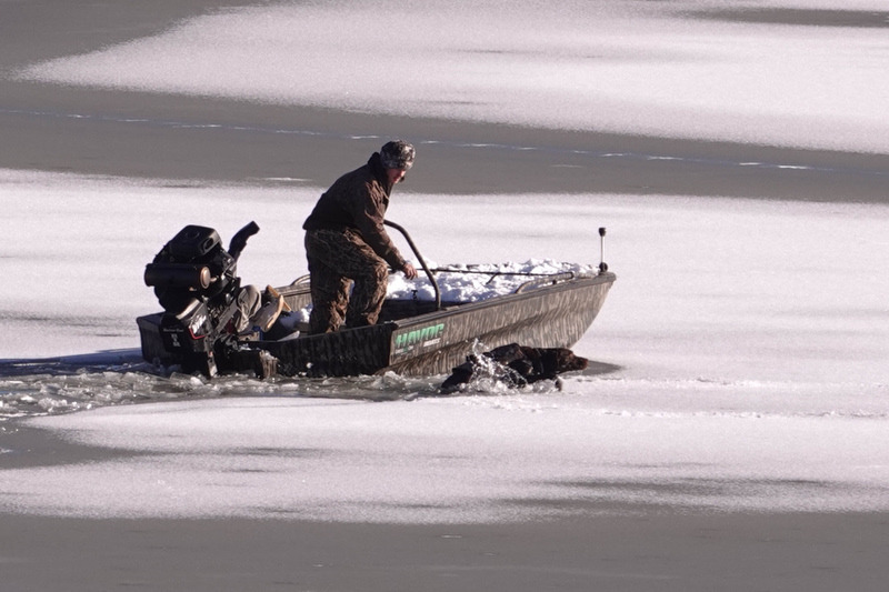 <strong>A dog struggles to get back into a boat after falling through the ice in Wolf River Harbor, Saturday, Feb. 20, 2021.</strong> (Karen Pulfer Focht/Special to The Daily Memphian)