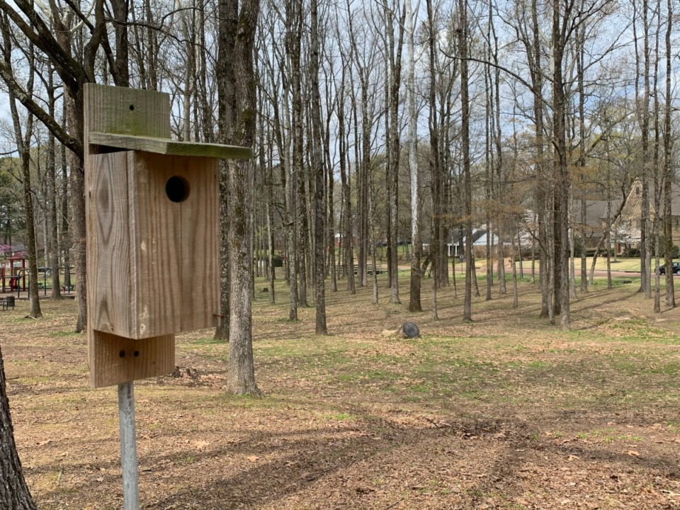 <strong>There are about 25 maintained bluebird nesting boxes throughout Germantown, including this one at Howard-McVay Park.</strong> (Abigail Warren/Daily Memphian)