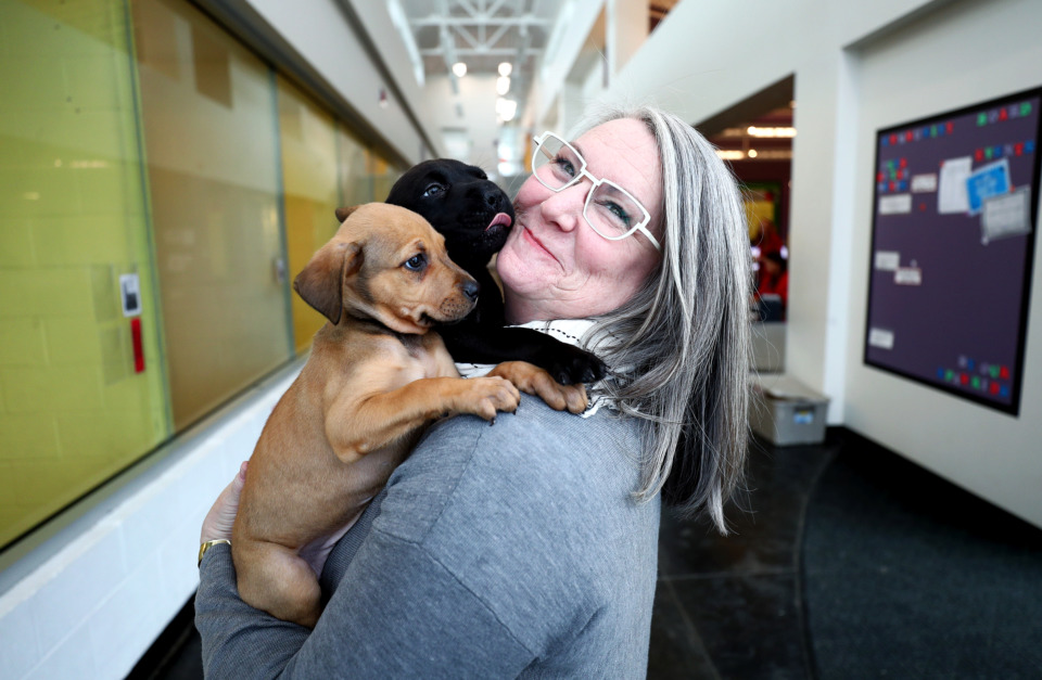 Humane Society sees leadership stability in new executive