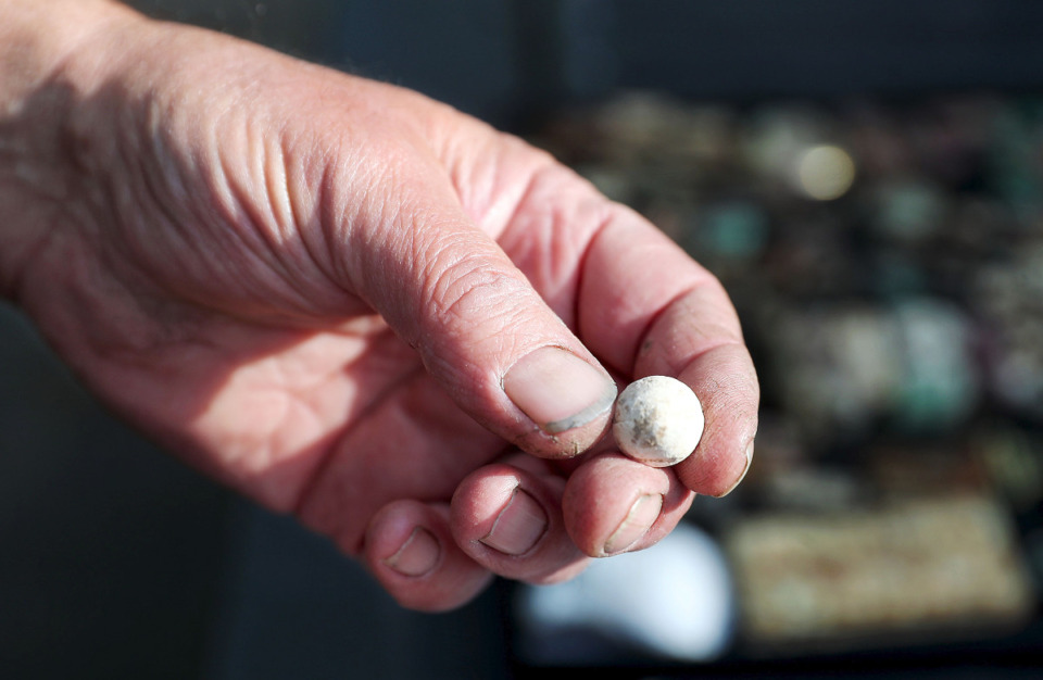 <strong>Steve Herr holds a Civil War-ear musket ball he unearthed at Overton Park April 15, 2021.</strong> (Patrick Lantrip/Daily Memphian)