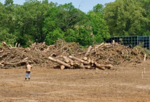<strong>Much of a 17.5-acre property at 1029 Cherry has been cleared for a senior-living community to be called Opus East Memphis</strong>. (Tom Bailey/Daily Memphian)