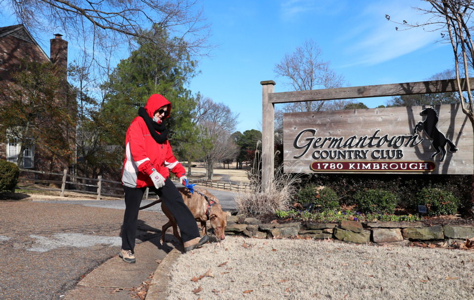 <strong>Amy Burkman, a resident of Germantown, walks her dog along the edge of the Germantown Country Club property facing Farmington Road. Burkman lives just three blocks from the golf course and has heard rumors of a possible new development soon to be underway at the country club.</strong> (Houston Cofield/Daily Memphian)