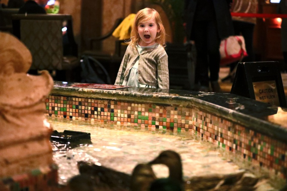 <strong>A young visitor to The Peabody in 2019 gasps with excitement as The Peabody ducks swim in the grand lobby fountain. AAA&nbsp;projects that more than 37&nbsp;million people will travel 50 miles or more between Thursday, May 27, and Monday, May 31, a 60% increase from last year.</strong>&nbsp;(Houston Cofield/Daily Memphian file)