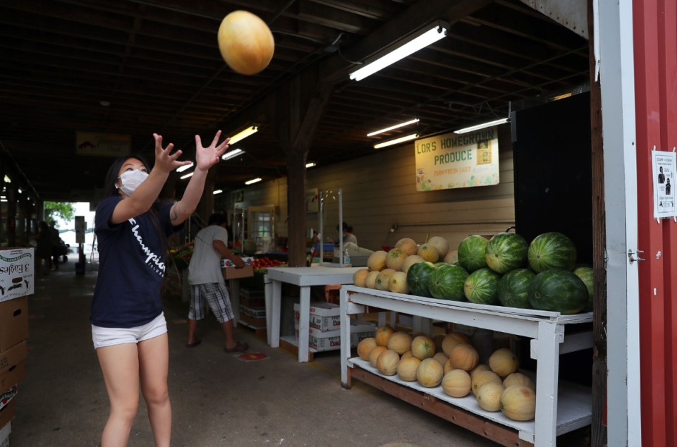 <strong>Chasney Vue, whose family runs the Lor&rsquo;s Homegrown Produce stand at Agricenter&rsquo;s Farmers Market, catches a cantaloupe tossed by one of her siblings while setting up the stand on Tuesday, June 1</strong>. (Patrick Lantrip/Daily Memphian)