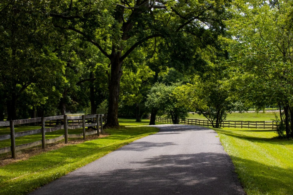 <strong>Wildwood Farm is a 350-acre farm owned by Olympic Gold Medalist Melanie Smith Taylor. The land will be transferred to UT Martin upon her death. </strong>(Steven Mantilla/UTM university relations)