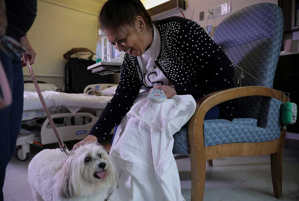 <strong>Junnie Reed enjoys a visit from Teva, a therapy dog that visited patients at St. Francis Hospital on Wednesday, Sept. 26. Teva and fellow pup Lily visited the hospital as a part of its volunteer program.</strong> (Patrick Lantrip/Daily Memphian)