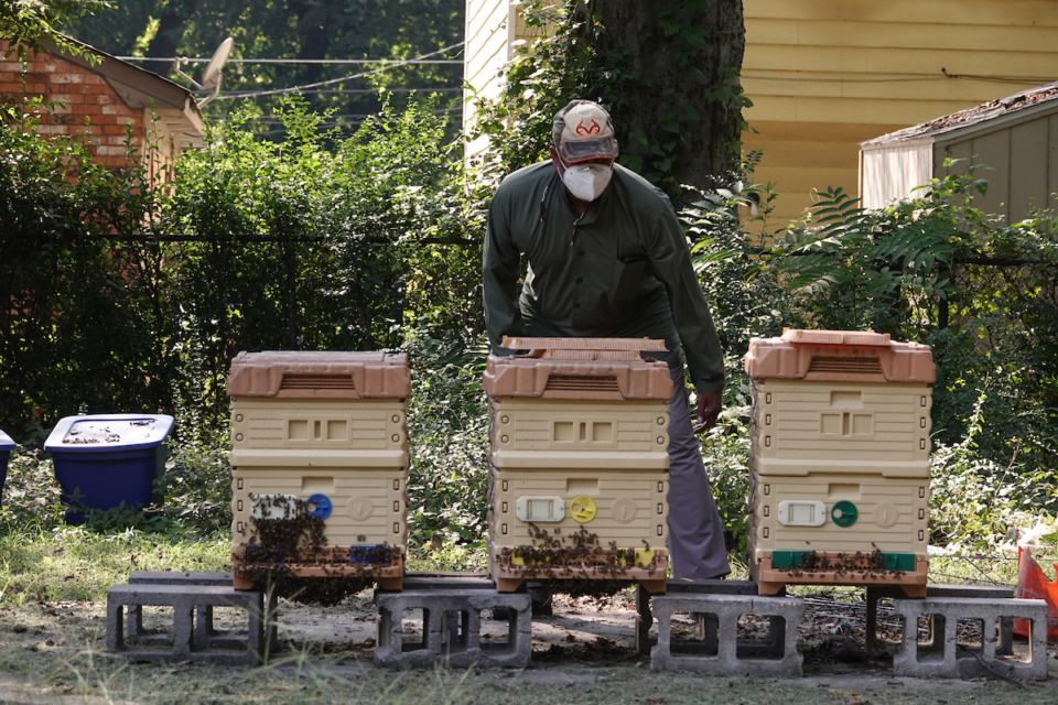 <strong>Abu Hamzah Abdul-Malik keeps bees and helps grow food in the community garden for the food bank at the Midtown Mosque.</strong> (Karen Pulfer Focht/Special to the Daily Memphian)