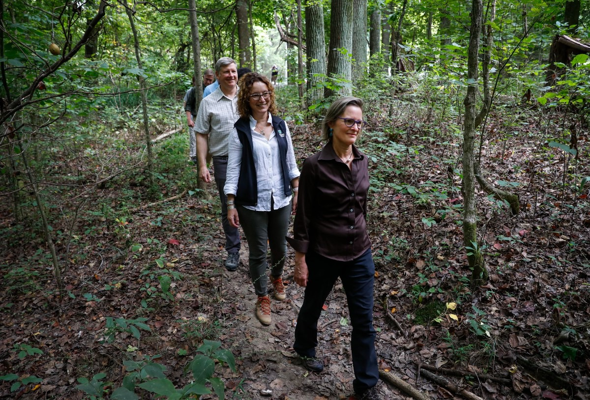<strong>Margaret Jones Fraser (front) takes part in a tour of the 144 acres her family donated.</strong> (Mark Weber/The Daily Memphian)