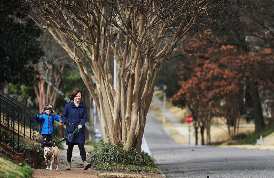 <strong>Laura and William Barrett, 5, take their dog Beasley for a walk in the Central Gardens Historic District.</strong> (Jim Weber/Daily Memphian)