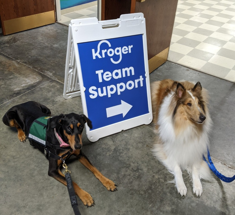 <strong>Maverick (right), and Kira were available to comfort survivors of the mass shooting being counseled at a Collierville church.</strong>&nbsp;<strong>Both are certified HOPE Animal-Assisted Crisis Response dogs.</strong> (Courtesy Rita Doyle)