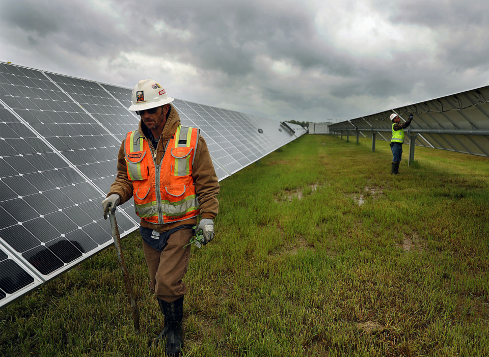 <strong>David Sherrock picks up storm-strewn debris from the Millington Solar Farm while co-worker Patrick Glover fixes some loose wires in the background on Friday, April 19. The largest solar farm in Tennessee, it&nbsp;will generate 53 megawatts of energy, enough to power 7,500 homes annually.</strong> (Patrick Lantrip/Daily Memphian)