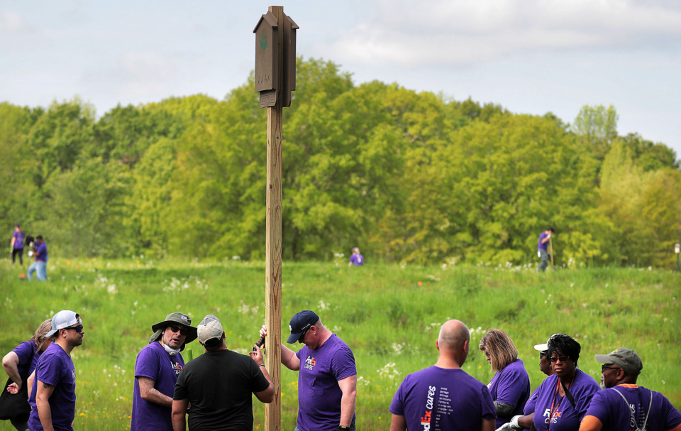 <strong>Volunteers from FedEx install bat boxes during an effort to put finishing touches on a new section of the Wolf River Greenway in Raleigh on April 24, 2019, in preparation for a grand opening Saturday.</strong> (Jim Weber/Daily Memphian)
