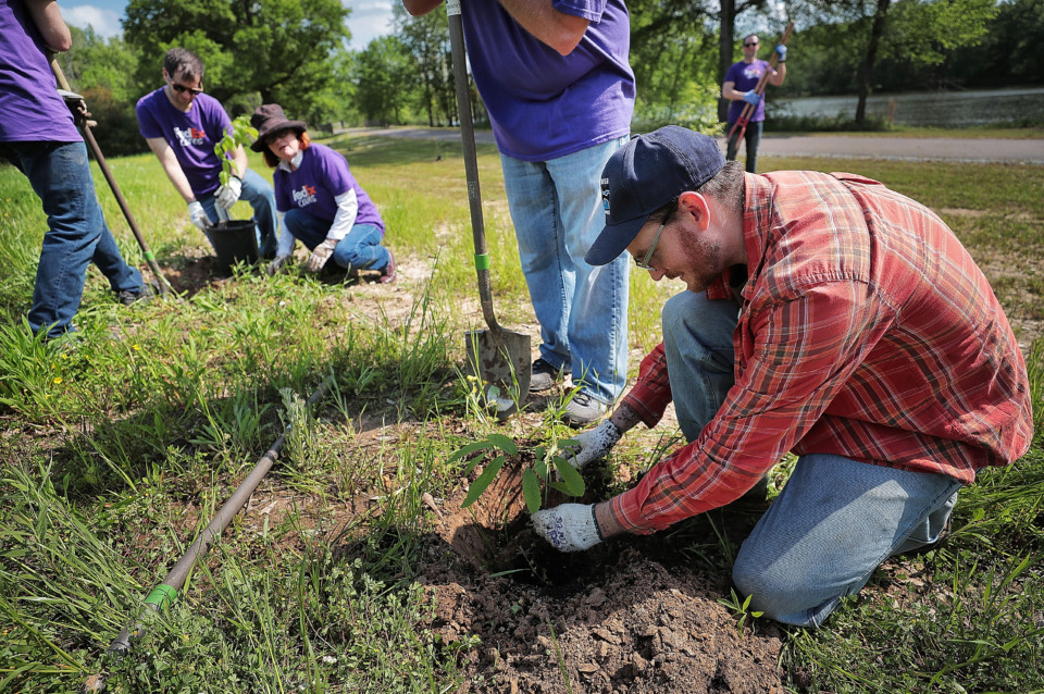 <strong>Ryan Hall with the Wolf River Conservancy (right) instructs FedEx volunteers on how to plant trees to help spruce up a new section of the Wolf River Greenway in Raleigh on April 24, 2019, in preparation for a grand opening Saturday.</strong> (Jim Weber/Daily Memphian)