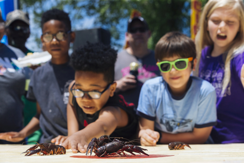<strong>Children participate in a crawfish race during the 27th annual Rajun Cajun Crawfish Festival Sunday in Downtown Memphis.</strong> (Ziggy Mack/Special to the Daily Memphian)